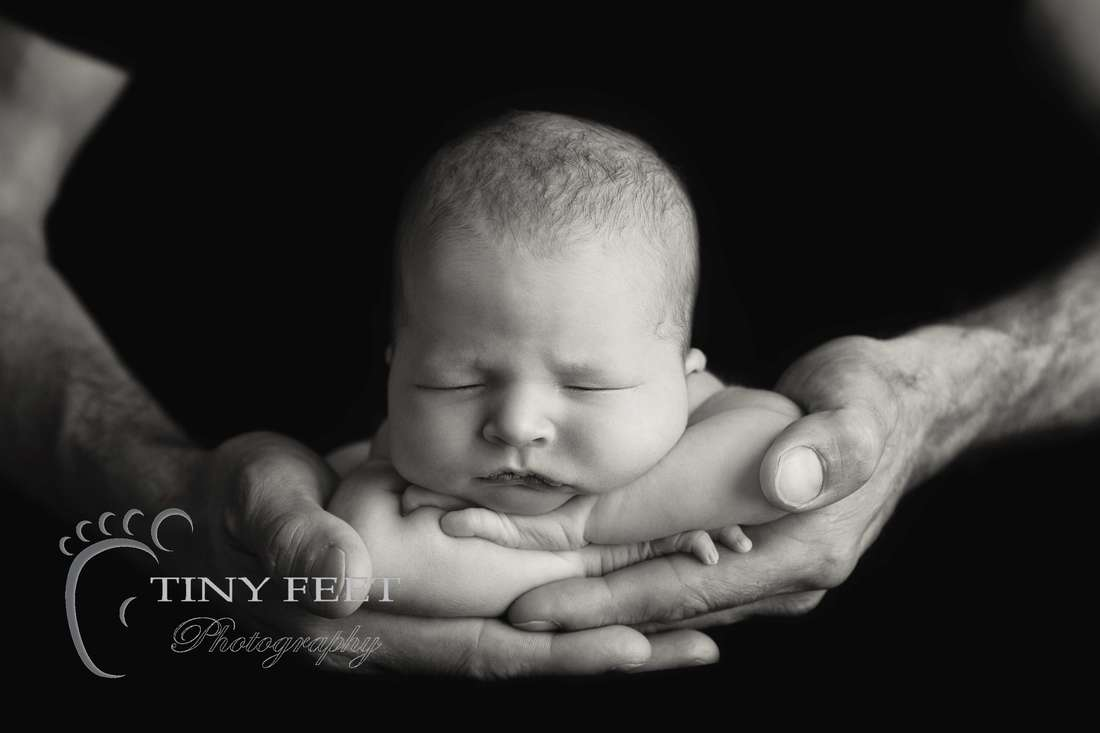 Tiny Feet Photography black and white image newborn baby posed in dads hands