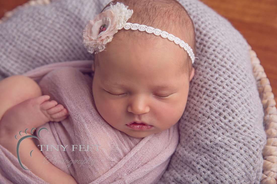 Tiny Feet Photography Newborn baby girl posed in pink and grey bowl