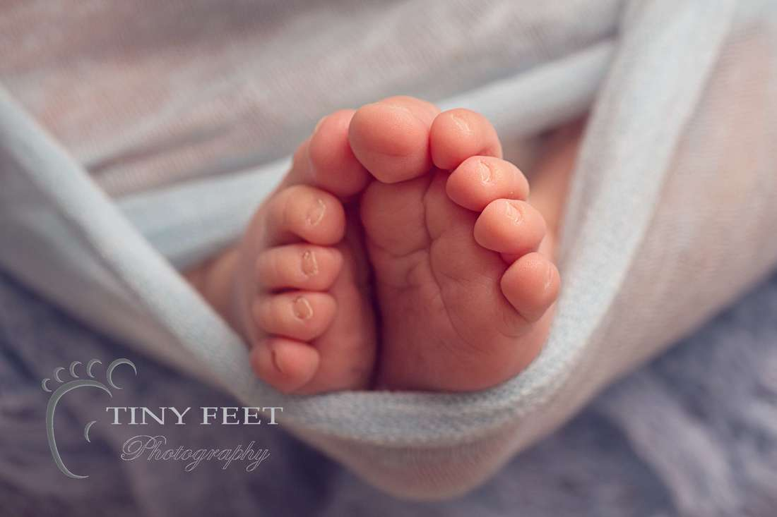 Tiny Feet Photography newborn baby close up shot of toes