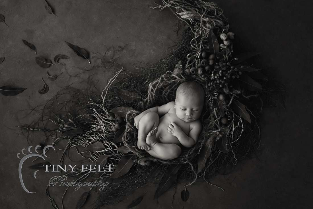 Tiny Feet Photography newborn baby boy in black and white image of digital backdrop with leaves