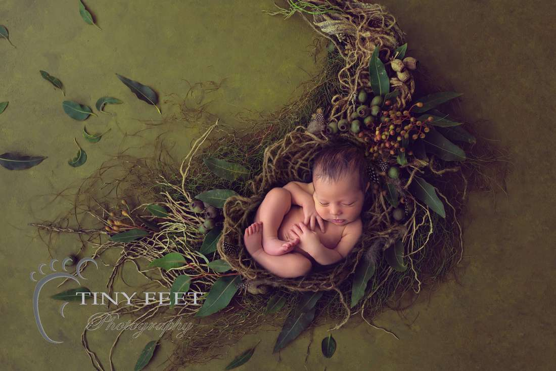 Tiny Feet Photography Newborn baby boy posed on black on digital backdrop