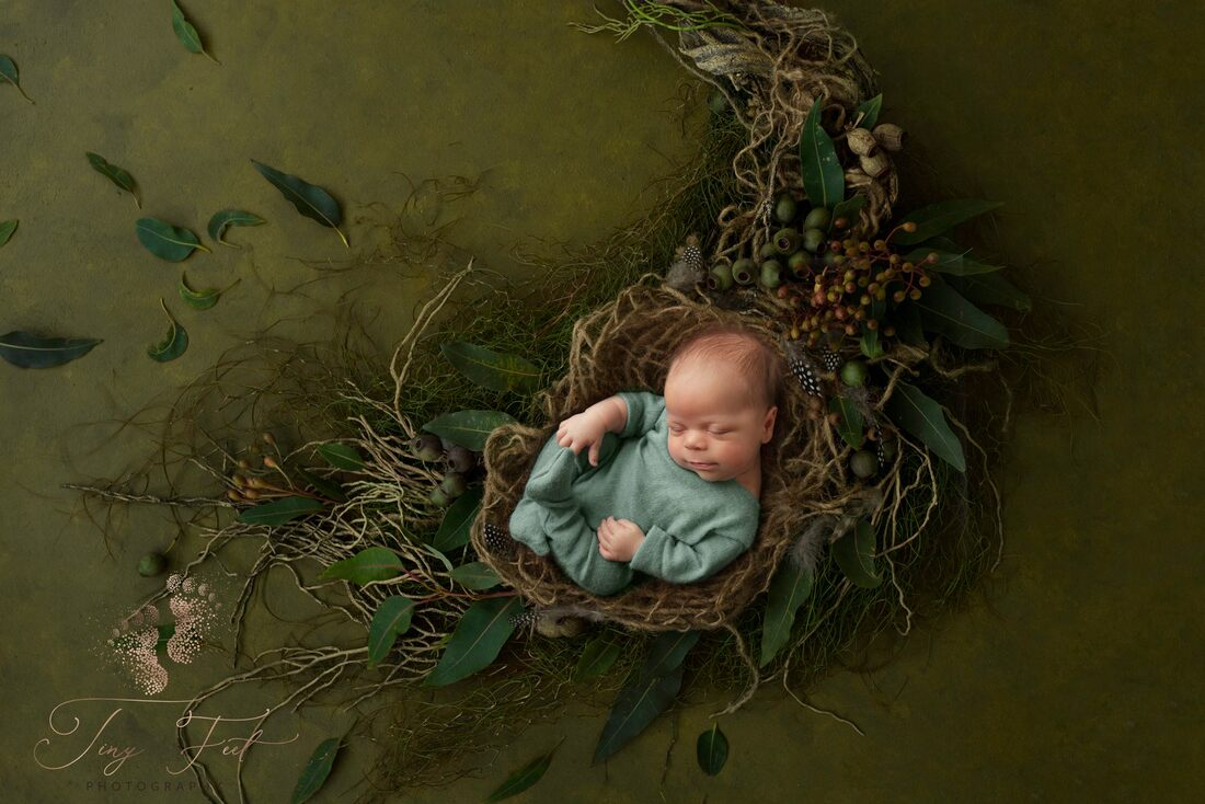 Tiny Feet Photography Newborn baby boy in green on digital backdrop with nature