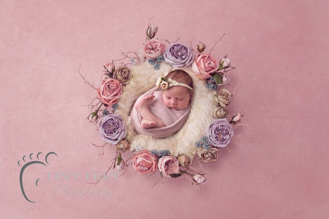 Tiny Feet Photography baby girl in pink flowers digital backdrop