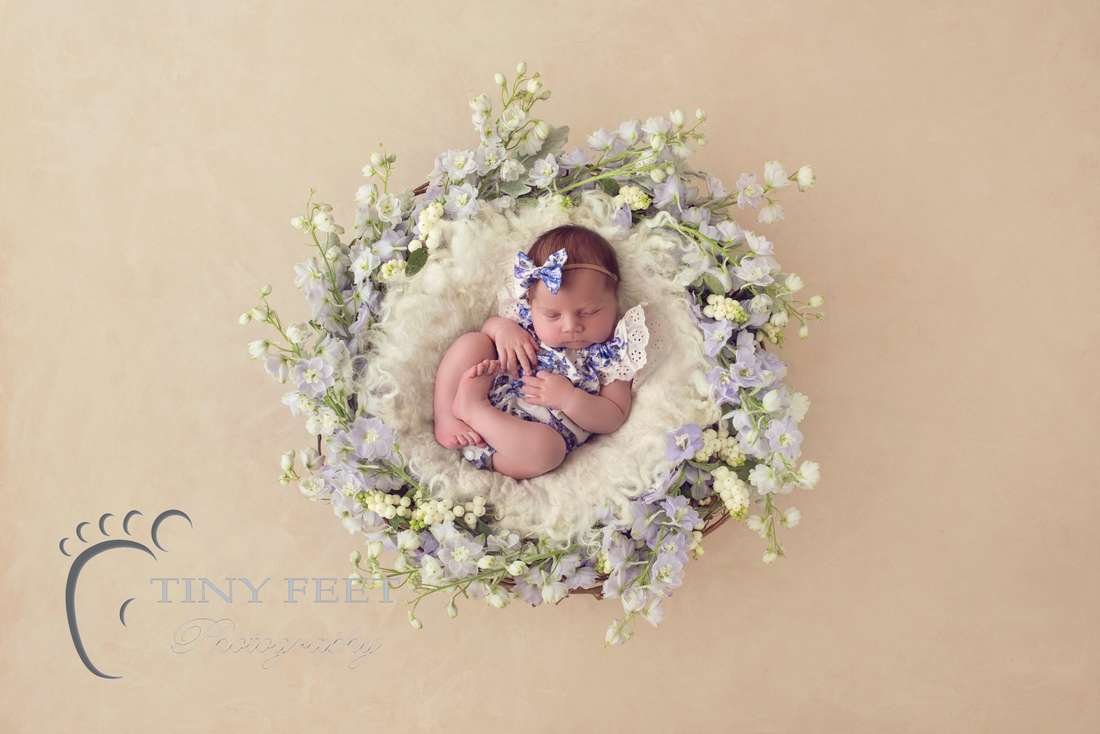 Tiny Feet Photography baby girl in flowers digital backdrop