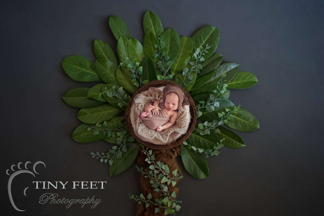 Tiny Feet Photography Newborn boy posed in basket transferred into a digital backdrop