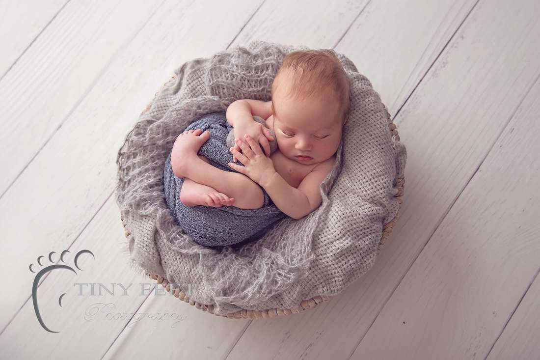 Tiny Feet Photography, newborn baby boy wrapped and posed in grey