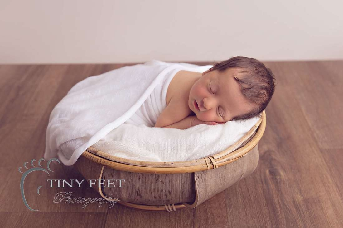Tiny Feet Photography, newborn baby girl posed on belly in coconut bowl