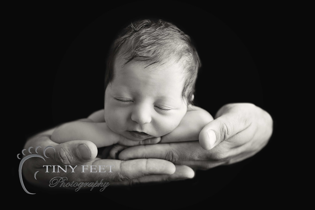 Tiny Feet Photography, newborn baby in black and white posed in dads hands