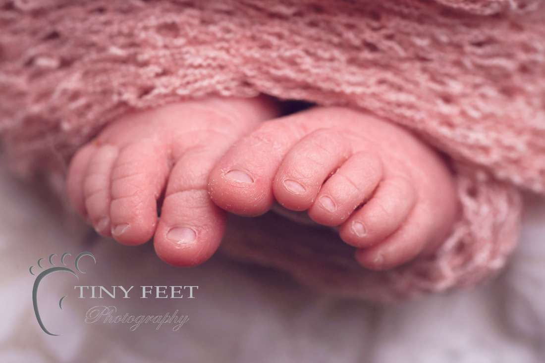 Tiny Feet Photography baby girl close macro details of toes