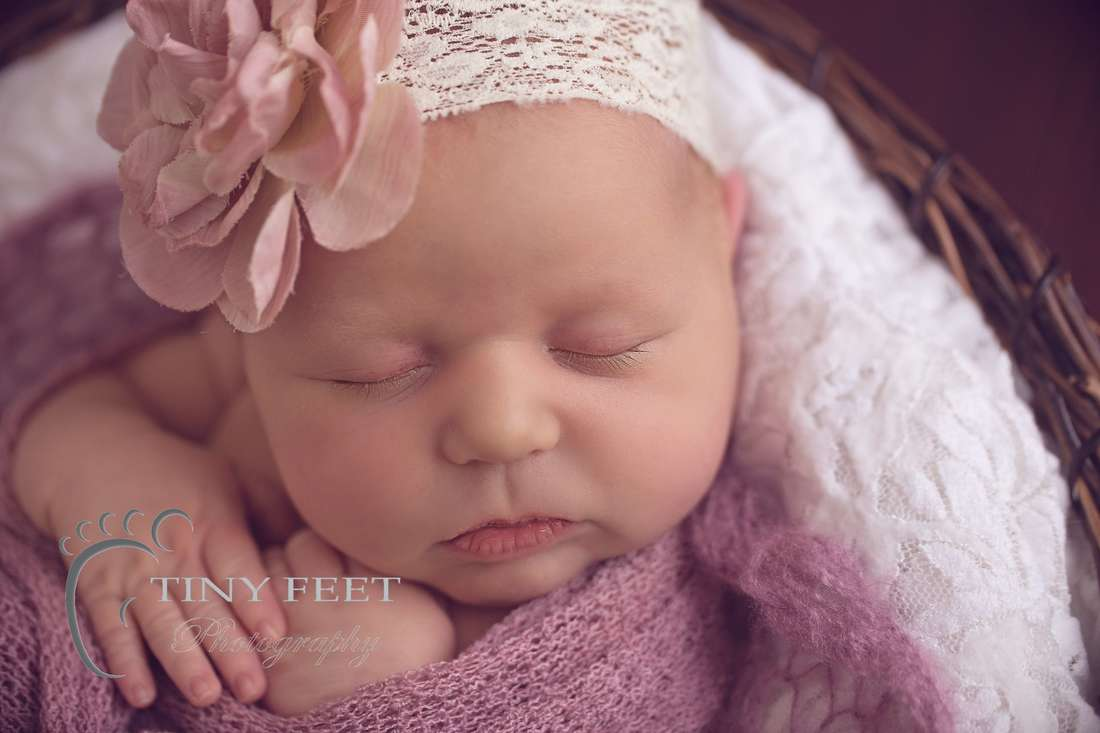 Tiny Feet Photography newborn baby girl posed in bowl