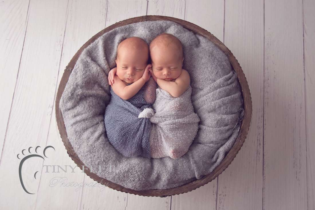 Tiny Feet Photography newborn boy twins posed in bowl
