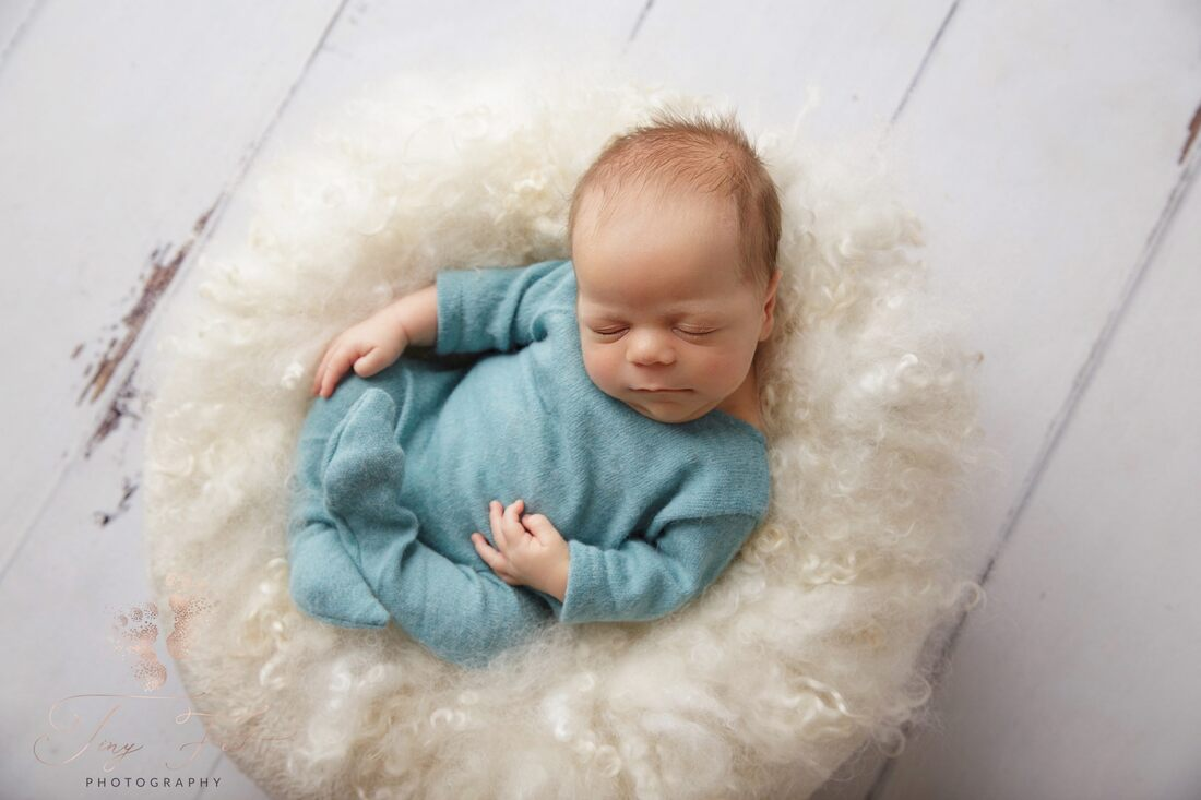 Tiny Feet Photography Newborn baby boy posed on white fluffy pillow