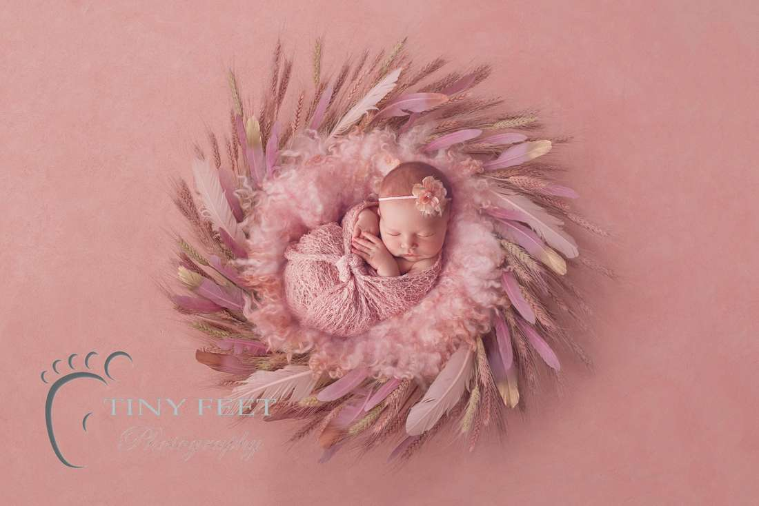 Tiny Feet Photography baby girl posed in pink wrap on pink digital backdrop with feathers