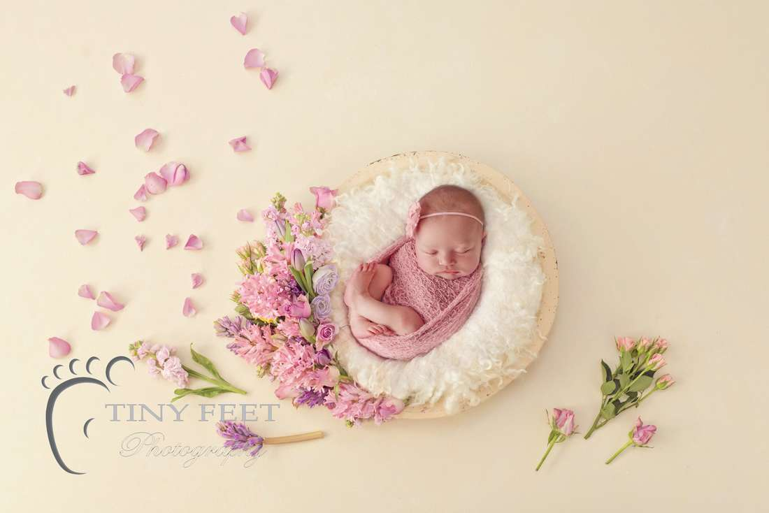 Tiny Feet Photography baby girl posed in pink wrap on cream digital backdrop with flowers