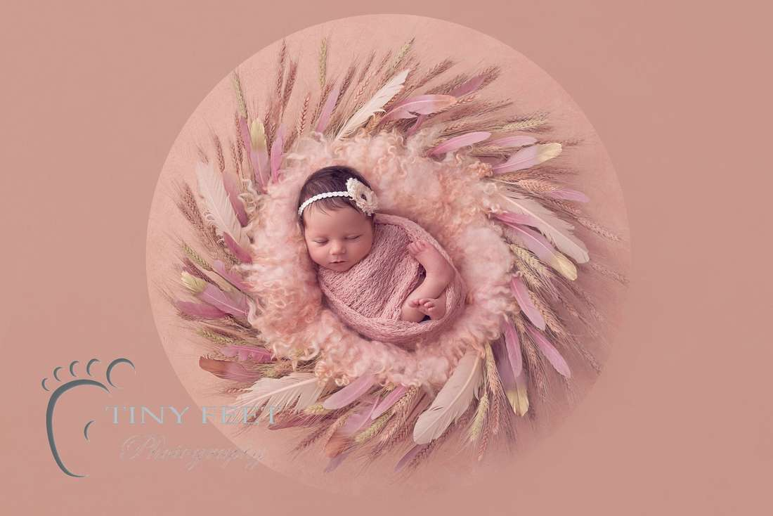 Tiny Feet Photography newborn baby girl in pink digital backdrop